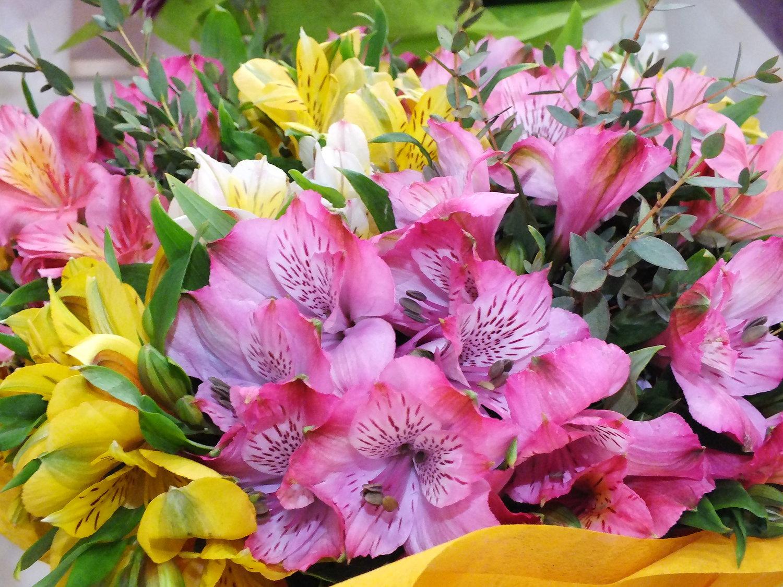 виды цветов для букетов фото с названиями реальных съёмок тестов